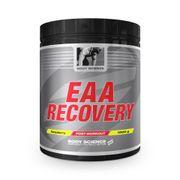 EAA Recovery